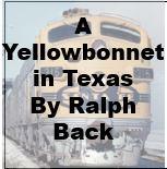 A Yellowbonnet in Texas