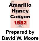 CLIC Book - Amarillo - Haney - Canyon, Texas - 1982